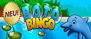 boto-bingo-1