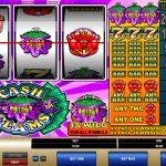 Cash Clams Gewinne