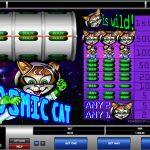 Cosmic Cat Gewinn