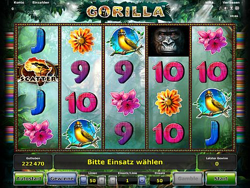 gorilla-vorschau