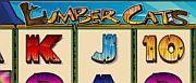 lumber-cats-1