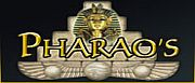 pharaos-bingo-1