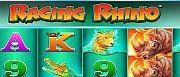raging-rhino-1