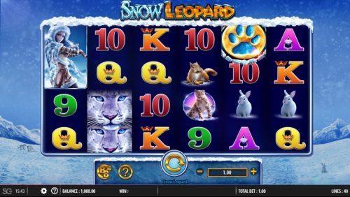 Snow Leopard Vorschau