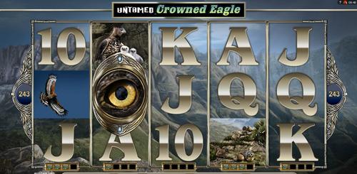untamed-crowned-eagle