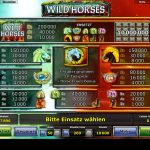wild-horses-gewinne